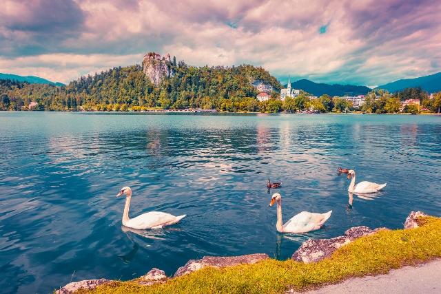 Ljubljana i Bled, 1 dan