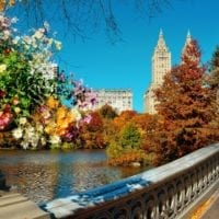 37859325 - central park autumn and buildings in midtown manhattan new york city