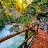 55283485 - the famous vintgar gorge canyon with wooden pats,bled,triglav,slovenia,europe