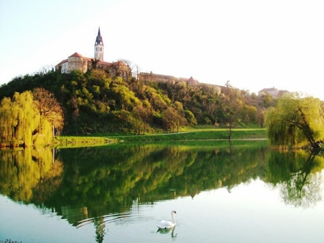 Muzej Vučedolske kulture, Ilok i Iločki podrumi